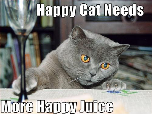 Name:  Happy Cat Needs More Happy Juice.jpg Views: 38 Size:  134.8 KB